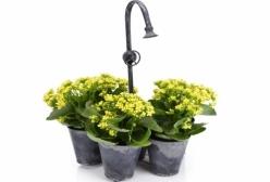 Floreira com 7 Vasos - 1 Peça