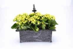 Floreira com Torneira Retangular - 1 Peça